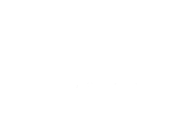 amerimar-enterprises-alice-app.png